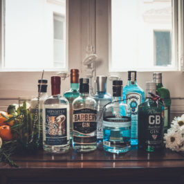 5 types of gin: do you know the difference?