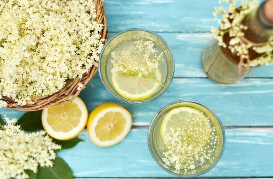 Gin and elderflower: the new taste of summer